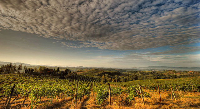 Around Florence: the Chianti region